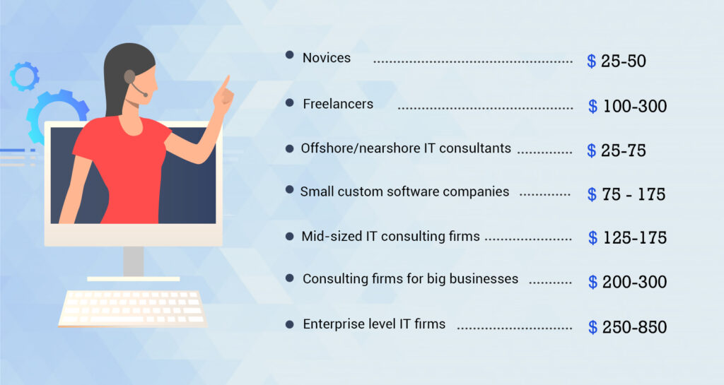 Categories of IT consulting services coast per hour